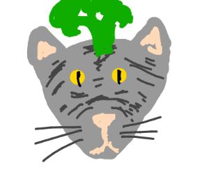 A cat broccoli hat