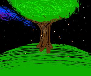 Fireflies near a tree