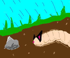 Cat worm