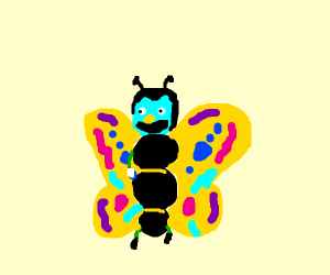 Butterfly from dhmis