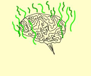 smelly brain