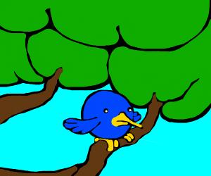 Bird ready to fly.