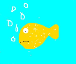 salted sea fish