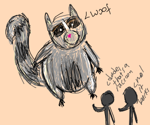 Chonky racoon says woof