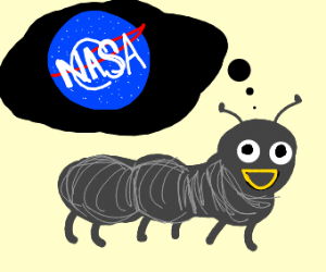 Happy Ant-Thing Because Of NASA