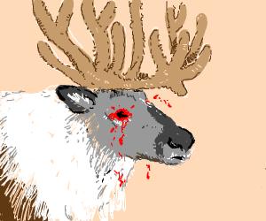 Reindeer lost their eyes
