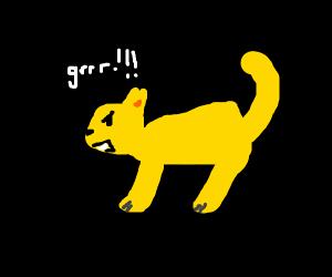 yellow growling cat