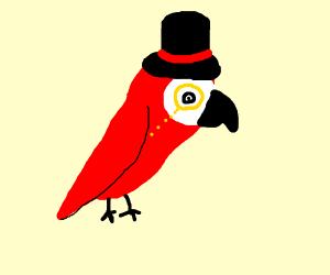 dapper parrot