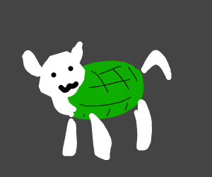 sheep and turtle crossover