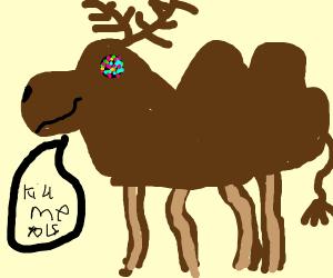 Reindeer crossed with Camel