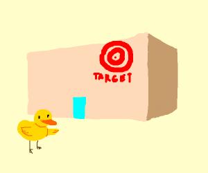 Duck identifies target