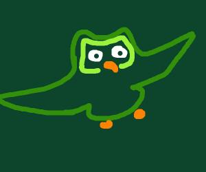 duolingo bird as an eagle.