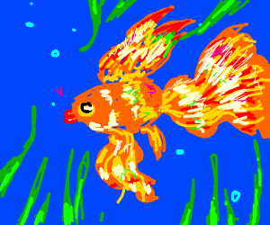 Gorgeous Goldfish