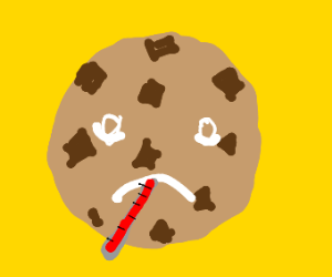 A sick chocolate chip cookie