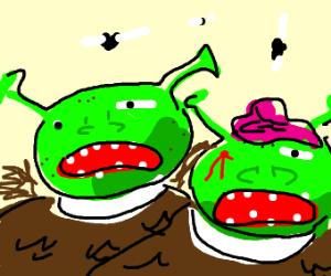 Two zombie Shreks