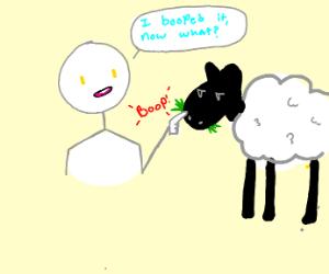boop the sheep