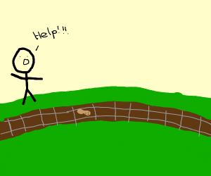 Peanut left on railway tracks, someone help!