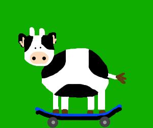 Cow Riding A Skateboard