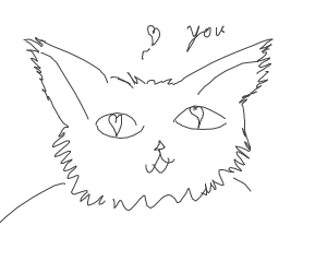 ♡ the cat loves you ♡