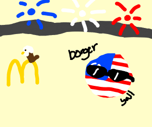 America in a nutshell
