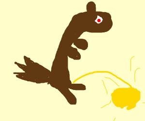 squirrel pissing