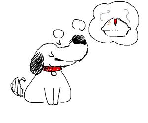 dog want pie