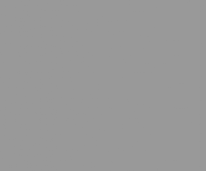 Literally Just The Color Gray