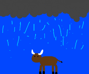 Buffalo in a Storm