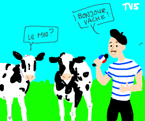 French show about cattle