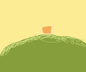 Orange Juice on a hill