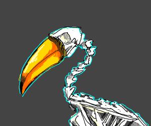 Tucán skeleton