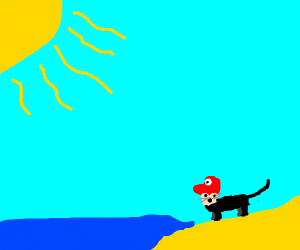 cat with mario head at the beach