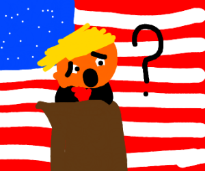 Trump with why face