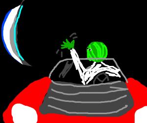 watermelyon beeee