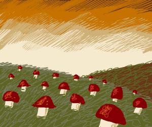 A field of pretty mushrooms