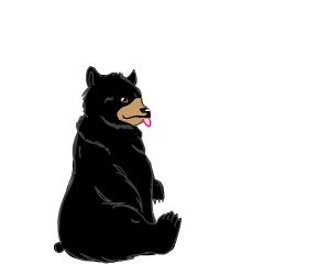 A happy black bear