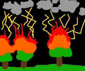 Trees on fire because of thunderstorms