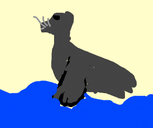 Seal-dog-beaver creature walks on water