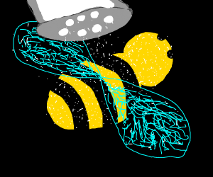 Salty Bee