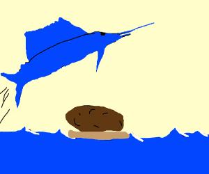 Sailfish jumping over a Potato