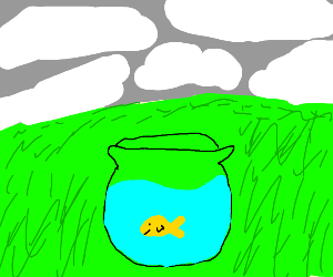 Goldfish bowl on grassy field in cloudy day