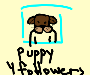 Profile of a puppy