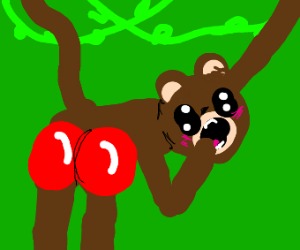 Monkey with red buttocks.