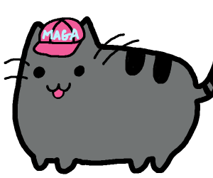 Conservative Cat