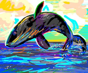 Lovely Black Whale ♡