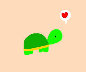 Turtle loves you