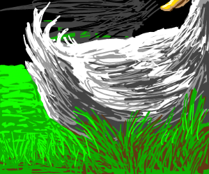 Ducktales, but not Ducks