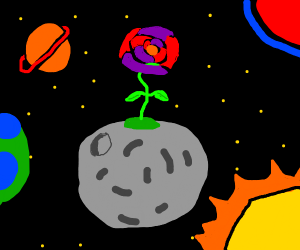 Space Plant