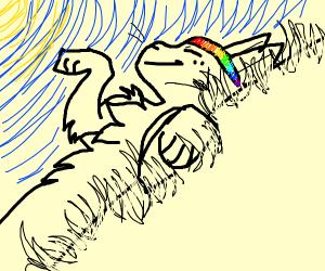 Cat laid on its back wearing rainbow headband