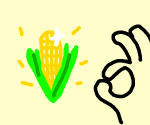 As was fortold! It is the perfect corn!